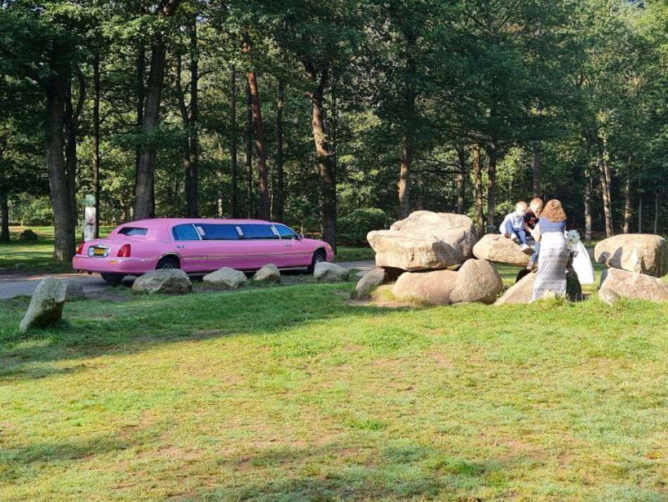 Limousine The Pink Lady - Partyvervoer Olivier
